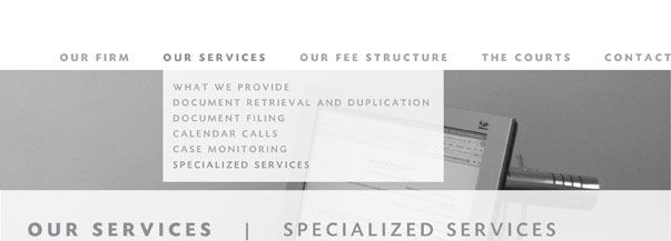Our Services: Specialized Services